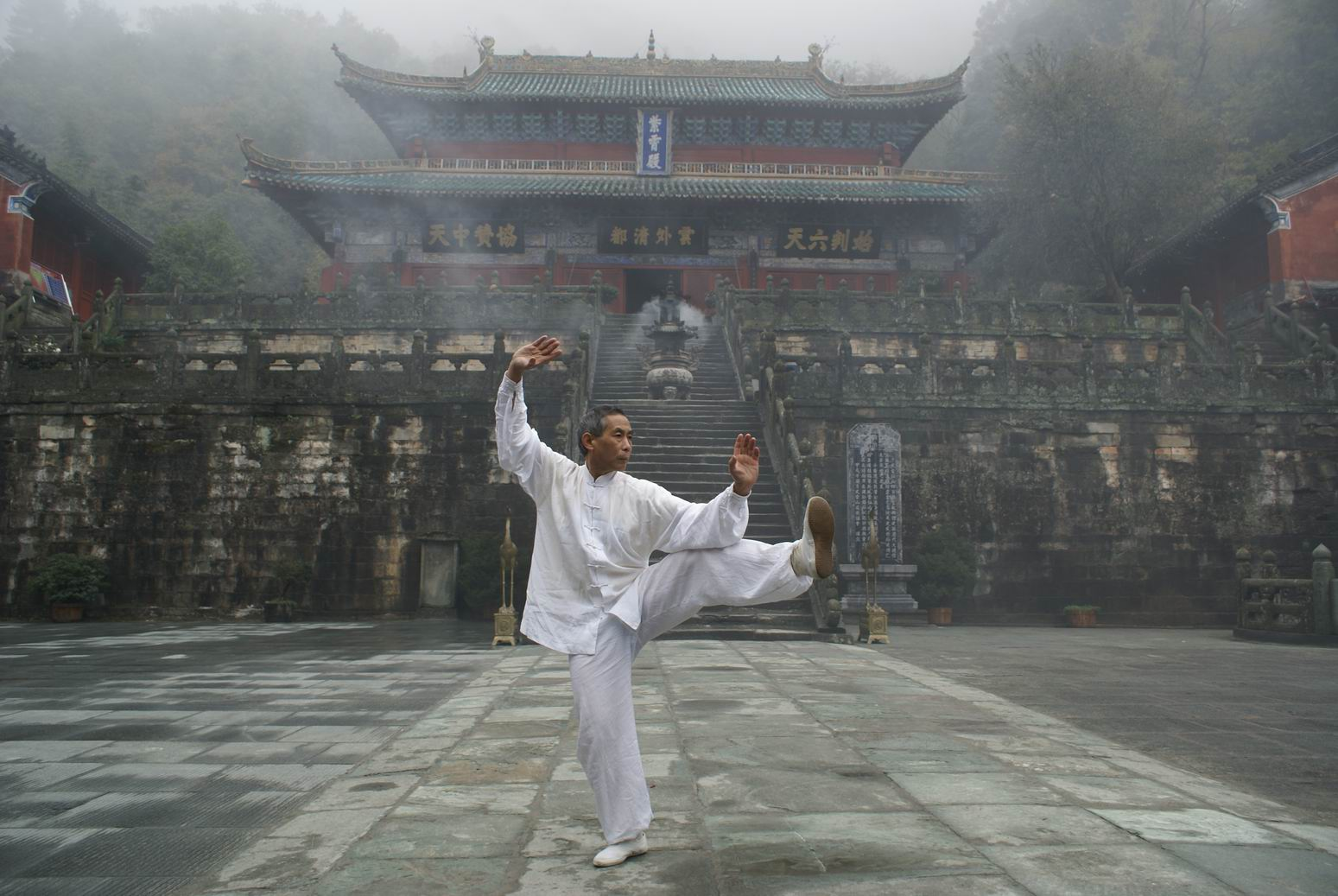 Китайская медицина багуа calme медпрепарат